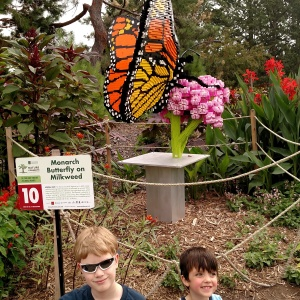 Arboretum Lego Butterfly