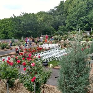 Arboretum- More Flowers